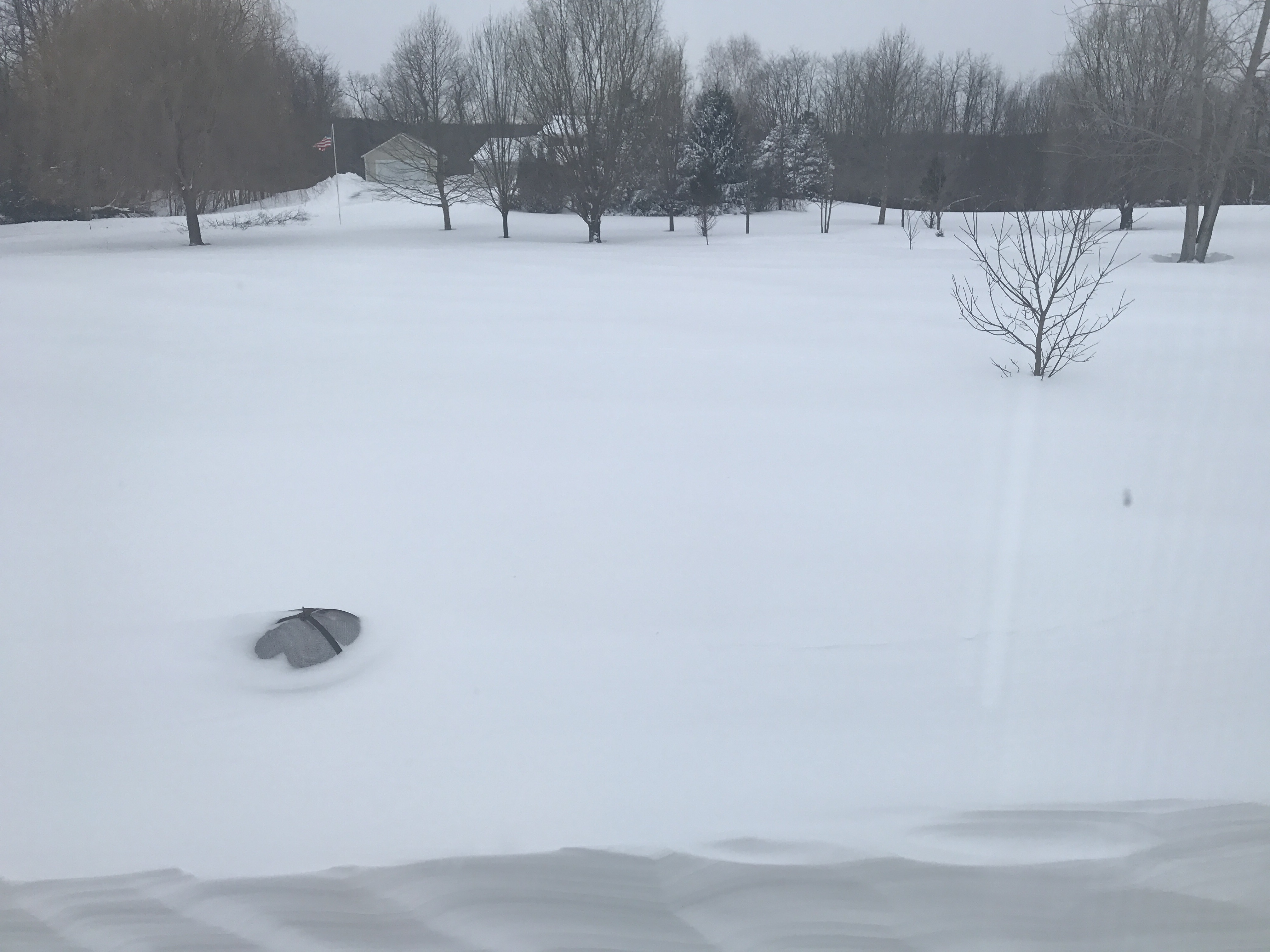 Blizzard of March 2017